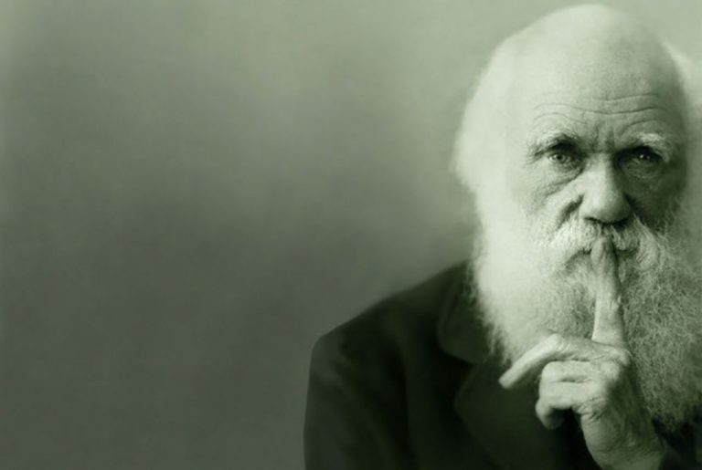 დარვინიზმი, ანუ სტარტაპების ევოლუცია