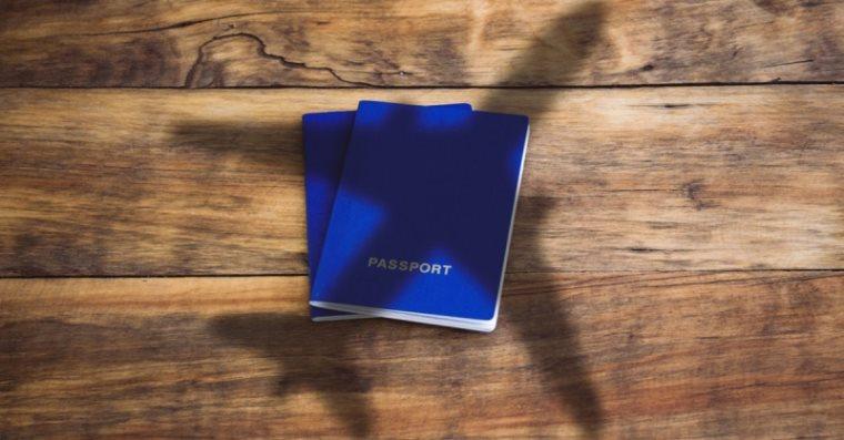 საქართველო პასპორტების ინდექსში დაწინაურდა