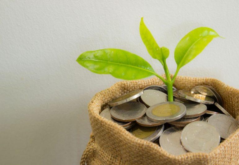 გაზრდილი ბიუჯეტი არ ემსახურება სწრაფ ეკონომიკურ განვითარებას