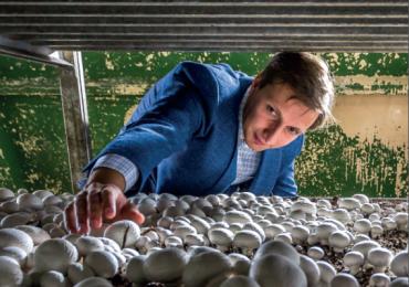 Mushrooming Success