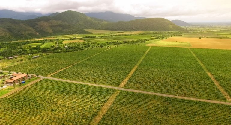 Why is Agriculture Stagnating?