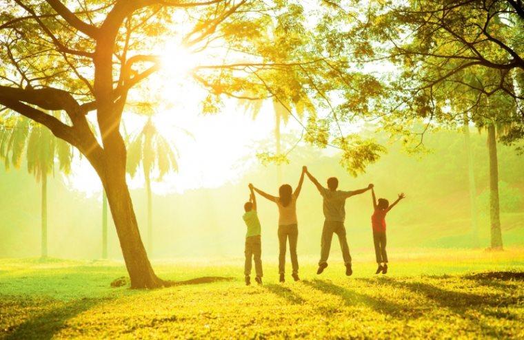 გენები და გარემო: ემთხვევა თუ არა რეალობა თქვენს წარმოდგენას?