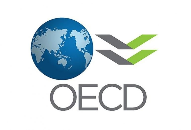 OECD Names Georgia as a Model Country for Supporting Small and Medium Enterprises