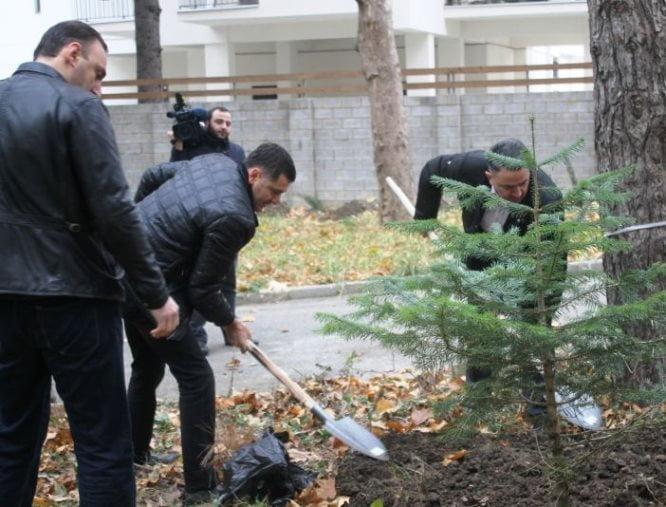 """""""არქი ჯგუფმა"""" თბილისში გამწვანება-დასუფთავების აქცია გამართა"""