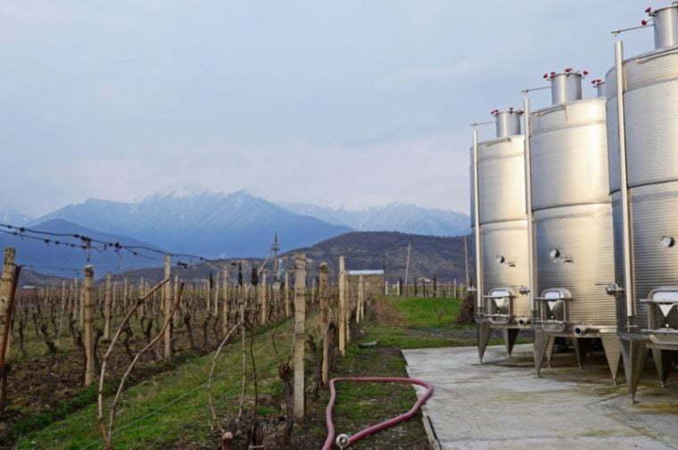 Экспорт грузинского вина растет