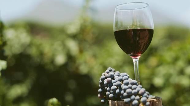 Georgian Wine Exports to the U.S. Continue to Climb During Lockdown – PRNewswire