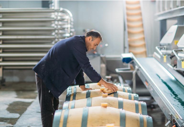 Shilda Winery: Energy Efficient Winery in Georgia