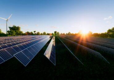 მზის ენერგია სოფლის მეურნეობის სამსახურში - ნიდერლანდებში საპილოტე პროექტი იწყება
